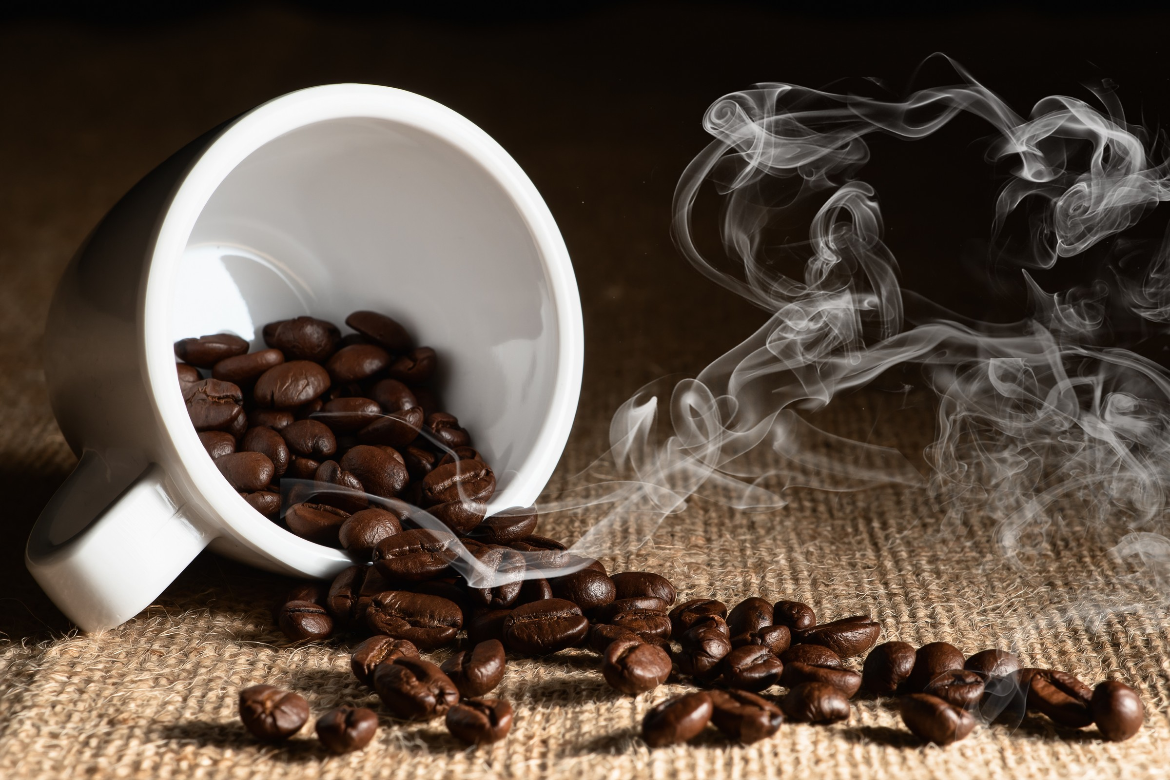 San Francisco Bay Area Coffee Equipment   Gourmet Office Coffee   Workplace Refreshment Services